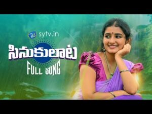 Sinukulata Latest New private song download Naa songs